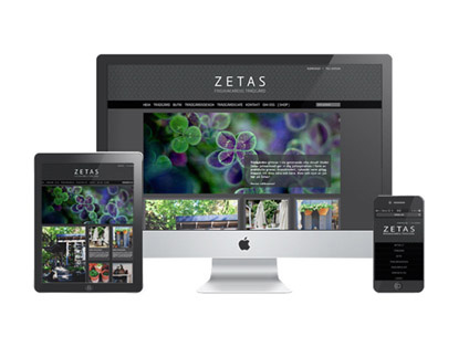 Zetas satsar på social e-handel